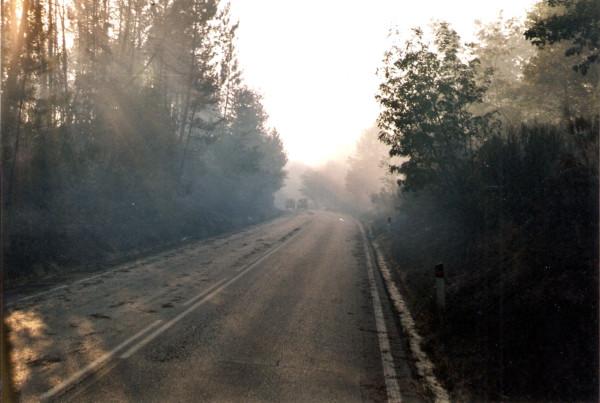 2001 08 05 Incendio Montefalco (PI) - 4